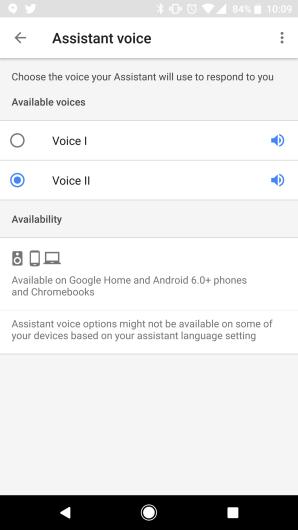 assistant voice.png